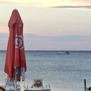 La pesca del novellame minaccia o opportunità per le coste lucane? Dalla Calabria, un'idea anche per la Basilicata